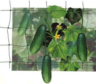 Tvirtinimo tinklas augalams, plastikinis, žalias, 1.2 x 10 m