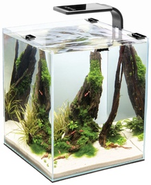 Aquael Aquarium Shrimp Set 10 Black