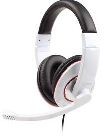 Ausinės Gembird MHS-001-GW Glossy White