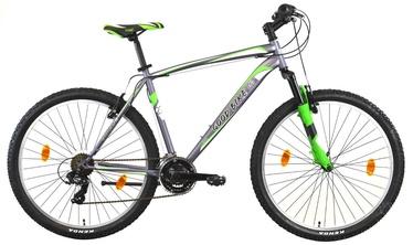 "Dviratis Bottari Good Bike Portland 77209 46cm 27.5"" Green"