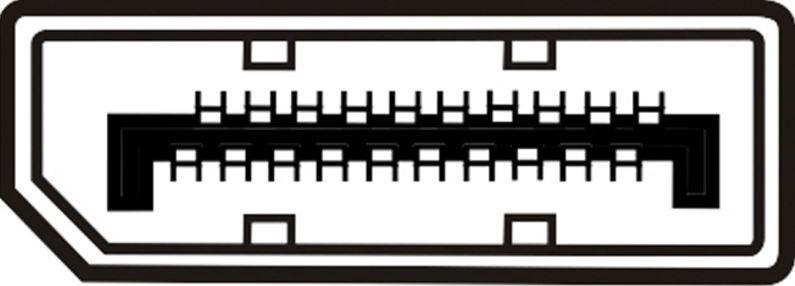 Assmann Adapter Cable Displayport / DVI-D Black 1m