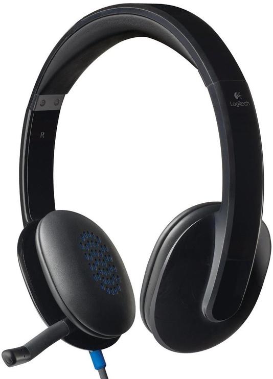Ausinės Logitech H540 Black/Gray