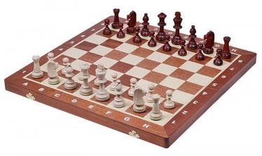 Sunrise Tournament No 5 Chess