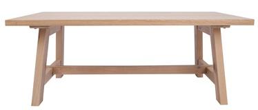 Kafijas galdiņš Home4you Bergen 18144, ozola, 1200x600x450 mm