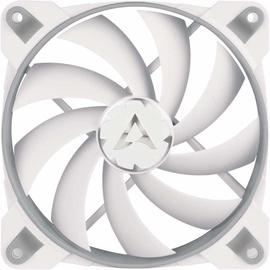 Arctic BioniX F120 Grey White ACFAN00164A