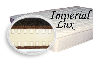 SPS+ Imperial Lux 100x200x24