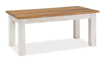 Kafijas galdiņš Signal Meble Poprad Honey/Bleached Pine, 1200x520x600 mm
