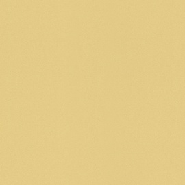 Viniliniai tapetai Rasch Selection 515640