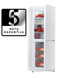 Šaldytuvas Snaigė RF30SM-S0002G0