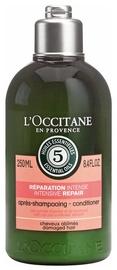 Plaukų kondicionierius L´Occitane Intensive Repair Conditioner, 250 ml