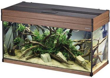Akvariumas Aquael Aspect 100, rudas, 184 l, su įranga