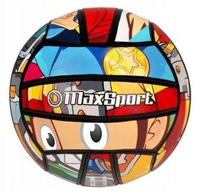 Artyk MAx Sport Volleyball Comics Ball