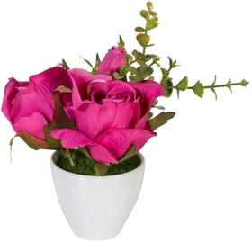 Home4you Roses In Garden With White Pot H15cm Pink