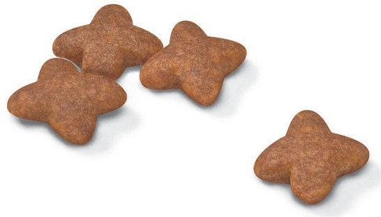 Sausas ėdalas šunims Royal Canin Mini Adult, 2 kg