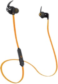 Ausinės Creative Outlier Sport Orange, belaidės