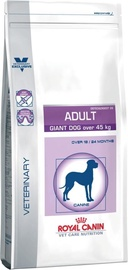 Royal Canin Corn & Poultry Adult 14kg