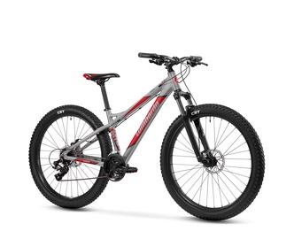 Jalgratas mozia 24 hõbe