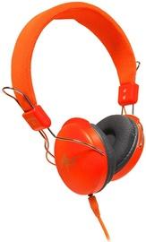 Ausinės ART AP-60MA Orange