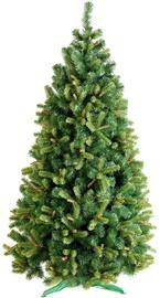 Dirbtinė Kalėdų eglutė DecoKing Wiera Green, 220 cm, su stovu