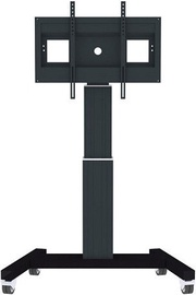 Televizoriaus laikiklis NewStar PLASMA-M2500 Flat Screen Floor Stand Black 42-100''