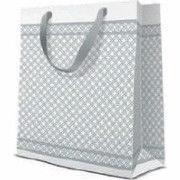 Paw Decor Collection Modern Premium Gift Bag 20x10x25cm