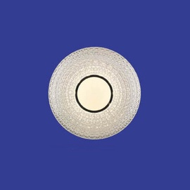 Plafoninis šviestuvas Domoletti B1698-1-R, 24W, LED, DIM, RC