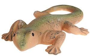 Verners HG4042 Lizard
