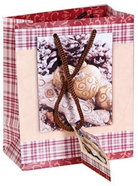 Verners Gift Bag 389425