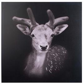 Mondex Roe Deer Painting 70x70x1.8cm