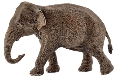 Žaislinė figūrėlė Schleich Asian Elephant Female 14753