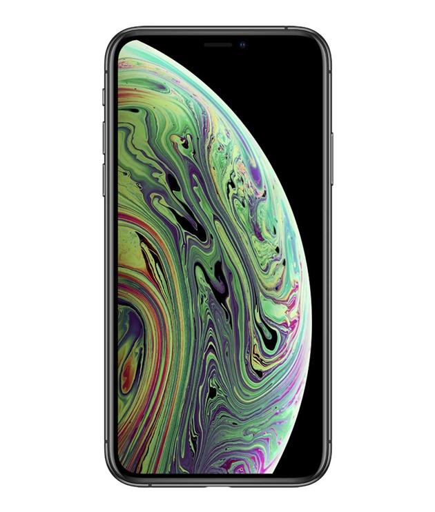 Mobilusis telefonas Apple iPhone XS 256GB Space Grey
