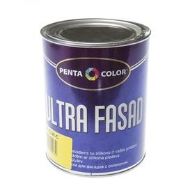 Krāsa dispersijas Pentacolor Ultra Fasad, 1 l