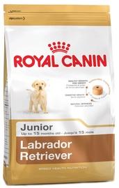 Royal Canin BHN Labrador Retvrievier Junior 12kg