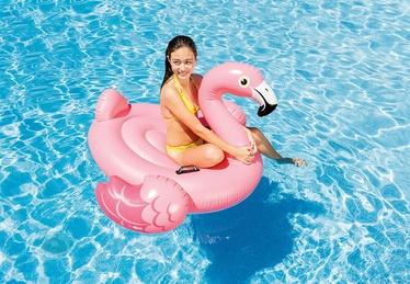 Pripučiamas plaustas Intex Flamingo, 142 x 134 cm
