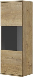 Halmar Nest W-2 Display Cabinet Oak/Black