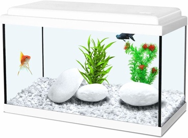 Zolux Aquarium Nanolife Kidz 35 White