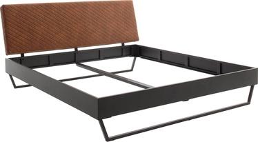 Lova Meise Möbel Boston 1, pilka, 222.5x185 cm