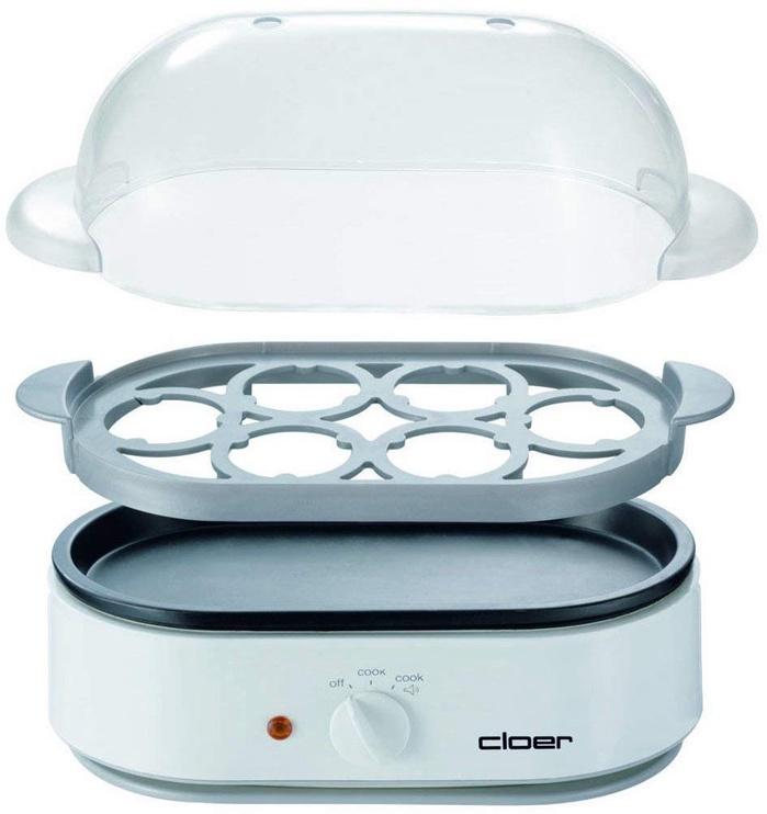 CLoer 6091