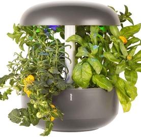 Plantui Smart Garden 6 Grey
