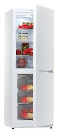 Šaldytuvas Snaigė RF30SM-S100210
