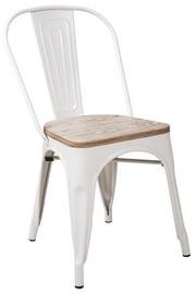 Signal Meble Chair Wood Loft Walnut/White