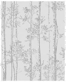 Viniliniai tapetai, Graham&Brown, Highland, 106574