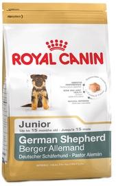 Royal Canin BHN German Shepherd Junior 12kg