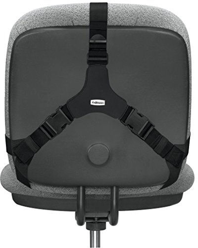 Fellowes Ultimate Back Support 8041801