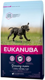 Eukanuba Puppy Large Breed With Chicken 3kg