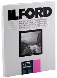 Ilford MG IV 1M Glossy 240 x 305 10