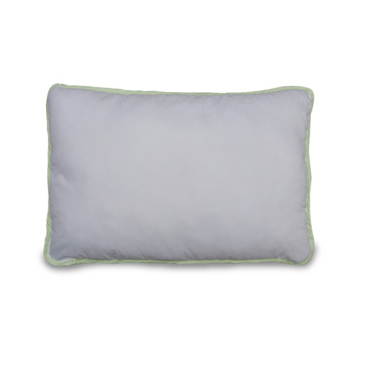 PILLOW 70X70 1P4P3/750-6-0/ALOE/R