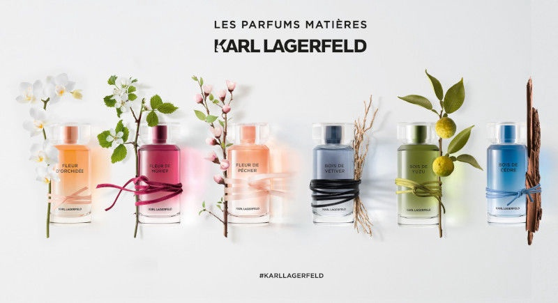 Tualetes ūdens Karl Lagerfeld Bois De Cedre 100ml EDT