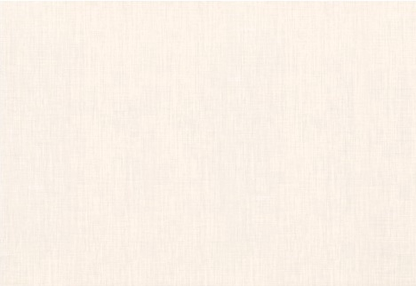 SIEN.FLĪZ.MICHEL 7C 27.5X40 (1.65