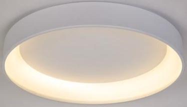 GAISMEKLIS P16250-1CL-D45 22W LED RC